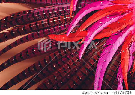 Brazilian Carnival. Dancing in bright tropical colors. Toning.Shallow depth of field. 64373701