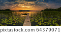 Panorama of beautiful sunrise over lake 64379071