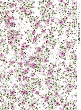 色彩丰富的花卉素材组合和设计元素 64379679