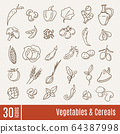 Flat icons in Vegetables and cereals infographic set. 64387998