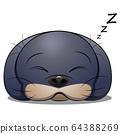 Seal animal sleep. Cartoon vector illustration on 64388269