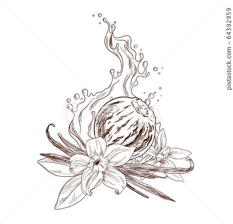 Vanilla flowers, beans, ice cream and cream 64392959