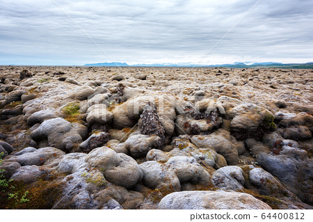 Lava field covered with green moss 64400812