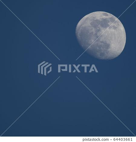 Moon 64403661