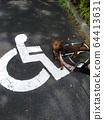 輪椅標誌和輪椅狗 64413631