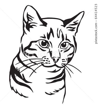 Decorative portrait of Cat 7 64414523