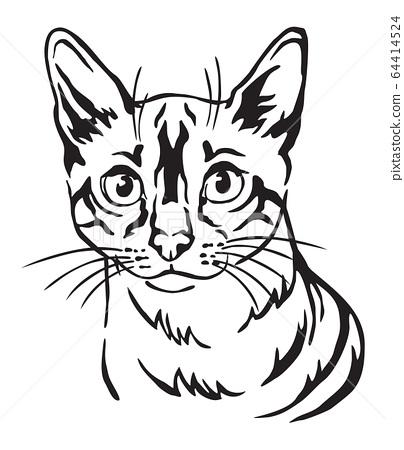 Decorative portrait of Cat 8 64414524