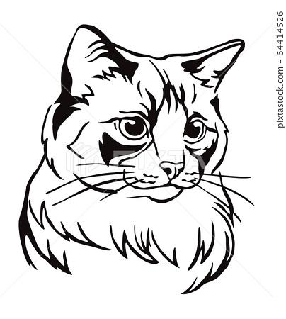 Decorative portrait of Cat 5 64414526