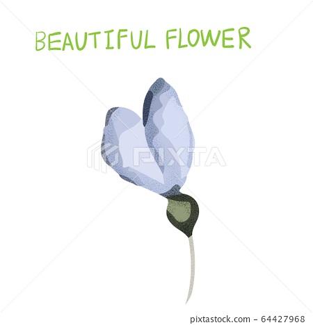 抽象的美麗花,瑪瑙花 64427968