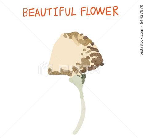 抽象的美麗花,瑪瑙花 64427970