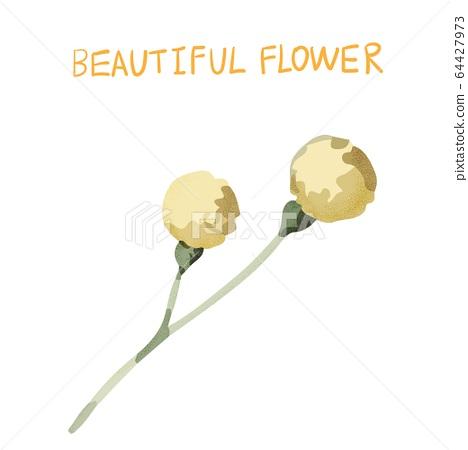 抽象的美麗花,瑪瑙花 64427973