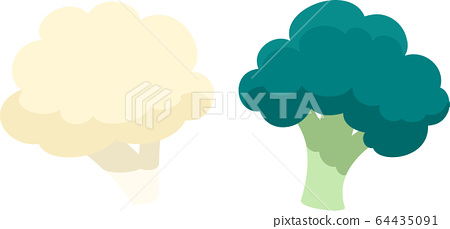 Broccoli and cauliflower 64435091