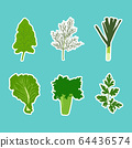 Vector set of flat cartoon vegetables stickers. 64436574