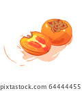 Persimmons watercolor style illustration with splash isolated on white background. Whole and half orange fruits vector greeting card design. Hand drawing Exotic food clip art. Kaki Japanese fruit 64444455