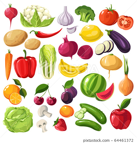 Fruits and vegetables, organic ingredients, useful meal vector 64461372