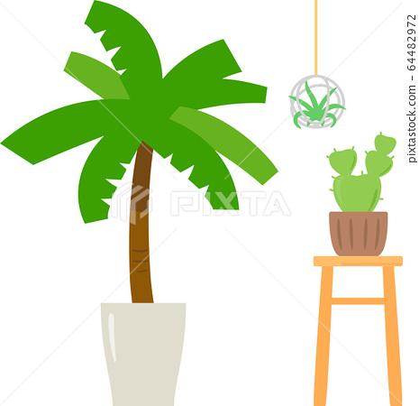 Foliage plant 64482972