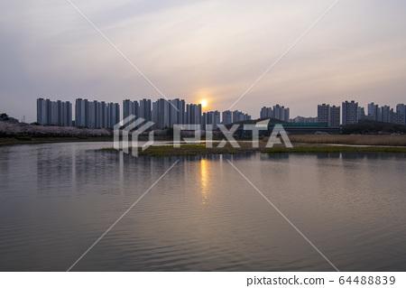 화랑저수지,안산시,경기도 64488839