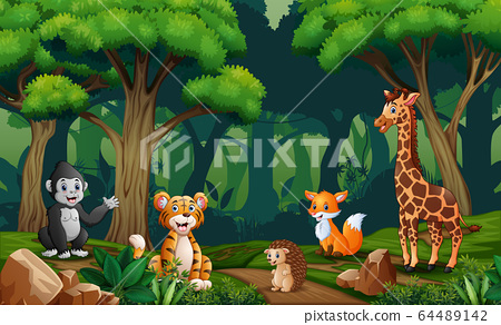 Scene with many animals in the forest 64489142