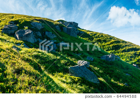 beautiful summer landscape in mountains. green 64494588