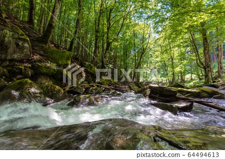 beautiful landscape of rapid mountain river. flow 64494613