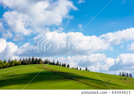 wonderful sunny weather with clouds above the 64494623
