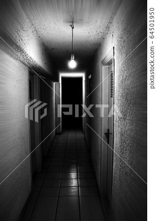 basement light 64501950