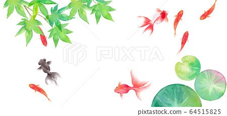 금붕어와 녹색 단풍 나무와 수련의 잎에서 구성한 여름 이미지 배경, 수채화 일러스트 64515825