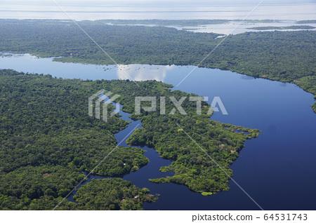 아마존의 풍경 64531743