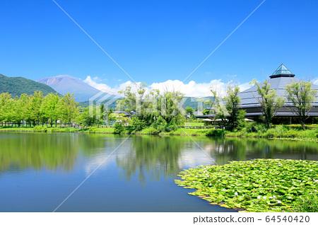 Karuizawa / Yagasaki Park in summer 64540420