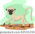 动物 猴子 矢量 64545294
