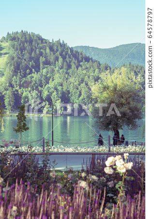 Lake Bled with colorful flower field in Slovenia 64578797