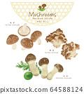 Mushroom illustration / hand-painted style / autumn taste 64588124
