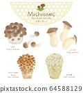 Mushroom illustration / hand-painted style / autumn taste 64588129