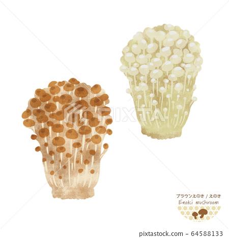 江之菇插圖/手繪風格/秋天的味道 64588133