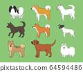 Japanese dog 64594486