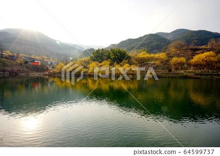 전라남도 구례군 산수유마을 풍경 64599737