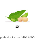 soy beans organic healthy vegetarian food on white background vector illustration 64612065