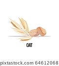 oat ear with dried whole grains organic healthy vegetarian food on white background 64612068