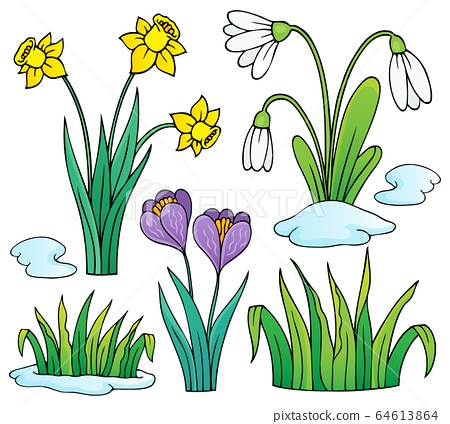 Early spring flowers theme set 1 64613864