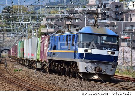 東海道本線真鶴JR Freight EF210-308(Suita) 64617229