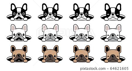 dog vector french bulldog icon hole hide cartoon character symbol illustration design 64621605