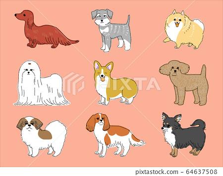Small dog 64637508