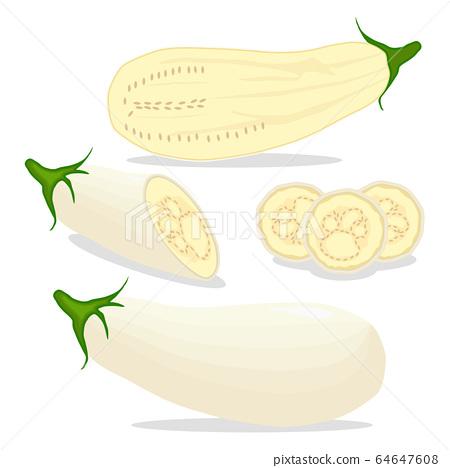 Vector illustration for whole ripe vegetable white 64647608