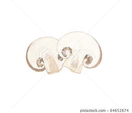 mushroom 64652674