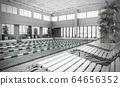 swimming pool interior 3d render image 64656352
