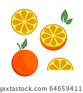 Orange citrus parts set half fruit icon bright art vector 64659411