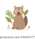 Cute funny raccoon sitting on a forest lane 64662477