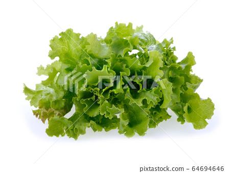 Salad leaf. Lettuce isolated on white background. lettuce high fiber for healthy. 64694646