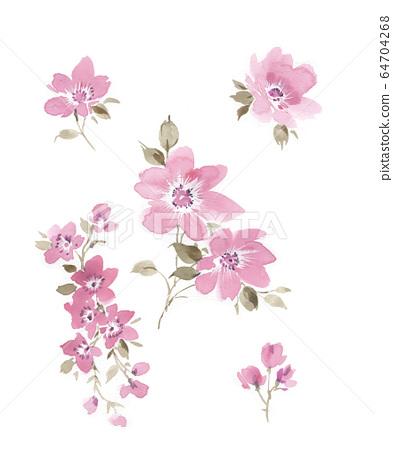 色彩豐富的花卉素材組合和設計元素 64704268