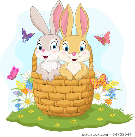 Couple rabbit cartoon in the basket 64708944